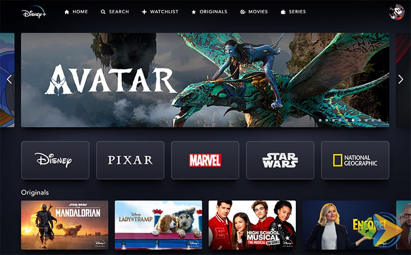 Disney+ Dashboard for users