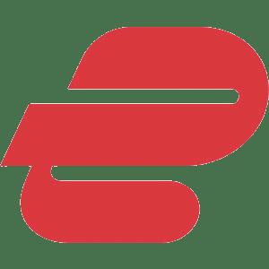 ExpressVPN Logo Mark